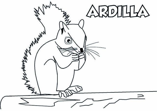 Dibujo de Ardilla para Imprimir y Colorear