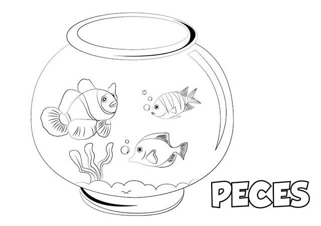 Colorear dibujo peces para imprimir colorear e imprimir for Peces de agua fria para consumo humano