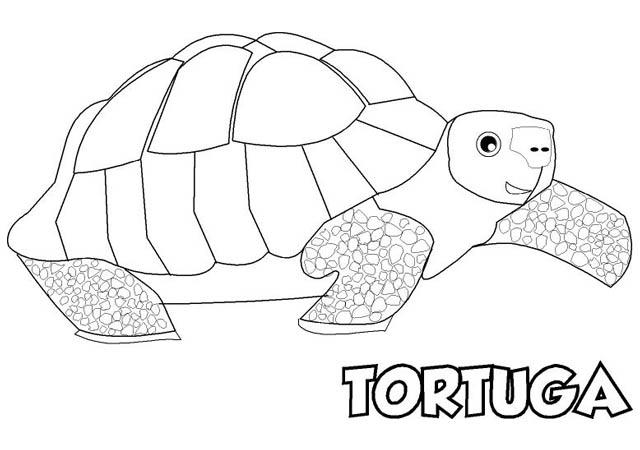 Dibujos De Animales Terrestres Para Colorear E Imprimir: Colorear Dibujo TORTUGA Para Imprimir ⋆ Colorear E Imprimir