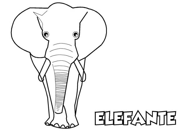 ✎ Dibujo Elefante para ☆Imprimir y Colorear ☆