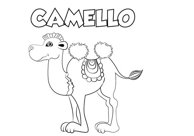Dibujo colorear CAMELLO