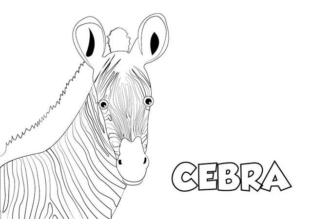 Colorear Dibujos Infantiles: Dibujo Cebra Para ★Imprimir Y Colorear★